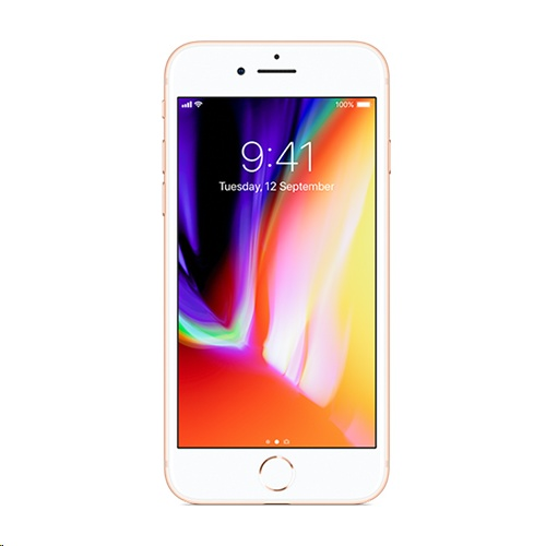 Image of Apple iPhone 8 64GB A1863 With Tempered Glass Screen Protector for iPhone 8 - Gold